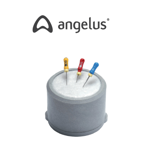 ANGELUS Endometric Süngerli Endobox